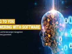 VI Software