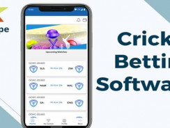 Entertain users with a cricket bookie software