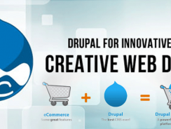 Top Drupal Development Company USA