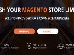 Best Magento Development Company From USA