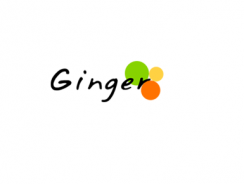 Ginger Webs – Testing & Assessment Solution Provider