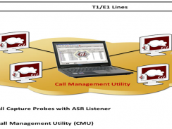 Voice Call Management