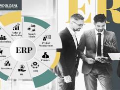 #1 ERP application Development toronto