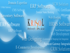 Krisol ERP – Engineering Industry