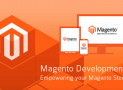 Best Magento Development Company USA