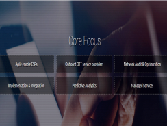 Megasoft   Telecom Network Services