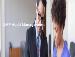 SAP Audit Management