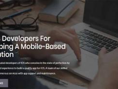 Top iOS App Developers
