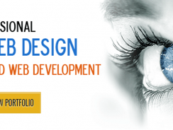 Web app & Logo Design & PHP Developer